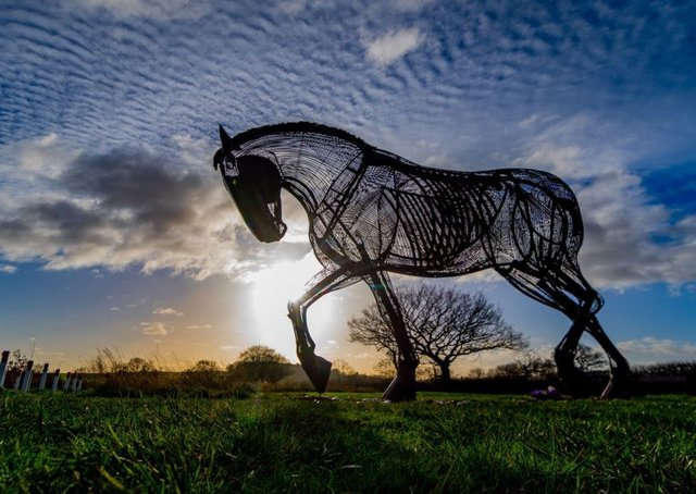 Featherstone's majestic war horse sculpture. Picture by James Hardisty.