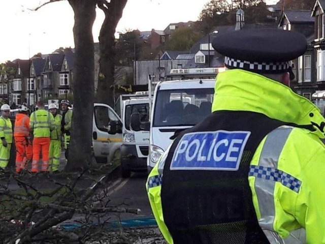 Police on Rustlings Road on the day of the tree-felling