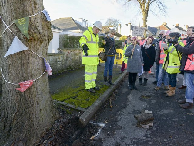 A new approach to tree-felling in Sheffield has previously threatened trees being saved from the axe. Picture: Dean Atkins.