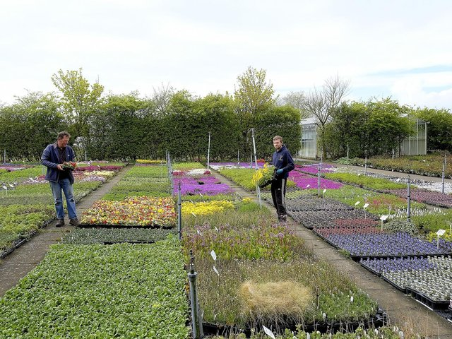 Call To Guarantee Garden Centres Will Be Among The First To Re Open Yorkshire Post