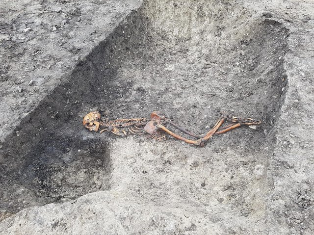 An Iron Age skeleton, one of several archaeological discoveries at Wellwick Farm, Wendover
