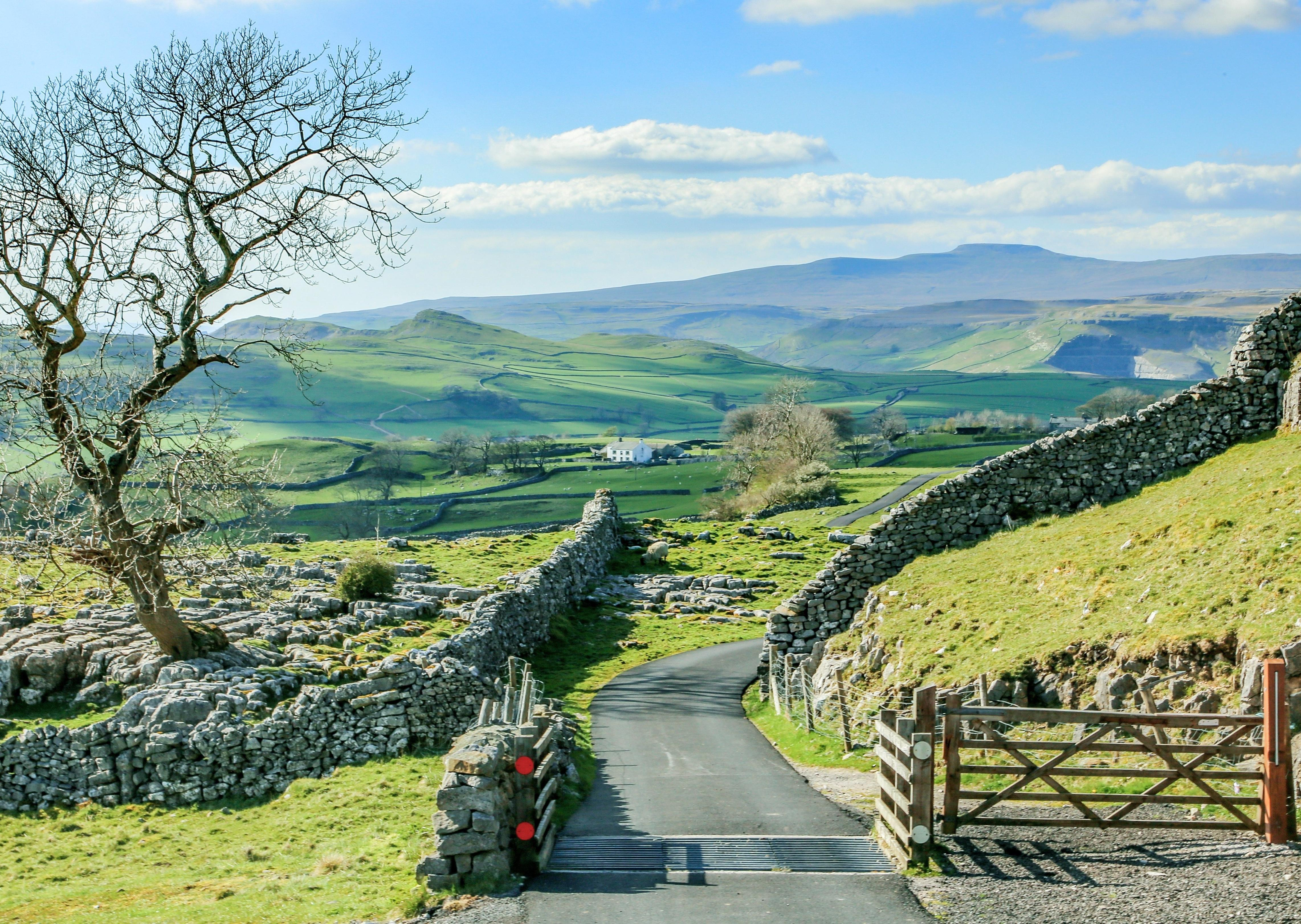 Why we must support Yorkshire's countryside to aid economic recovery - Dorothy Fairburn