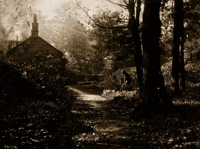 An albumen print of a man tending his cottage garden in an idyllic wooded glade. Original Artwork: From  a series 'Views Around Whitby And Eskdale, North Yorkshire'.   (Photo by Frank  Meadow Sutcliffe/Getty Images)