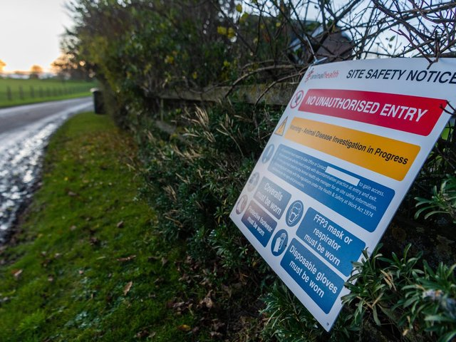 A 3km zone in Northallerton has been closed to prevent the spread of the infectious virus