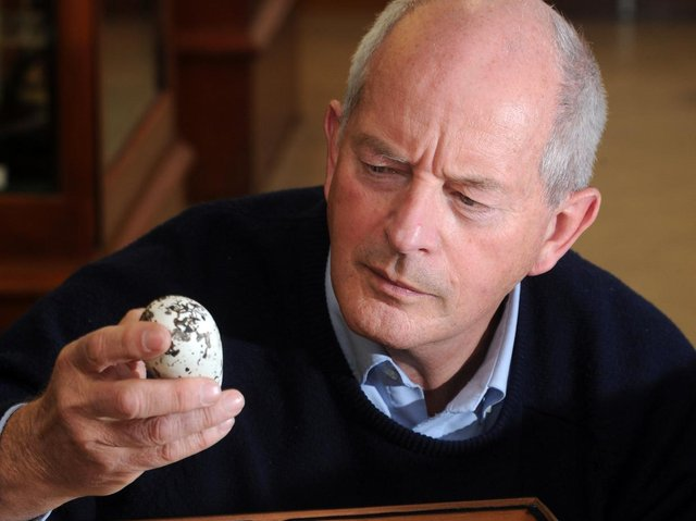 Prof Tim Birkhead, pictured previously with Guillemot eggs at the Alfred Denny Museum at Sheffield University.