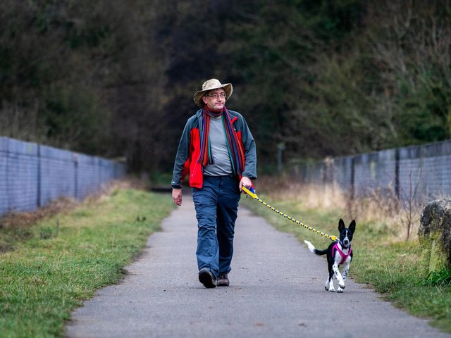 Andrew White, presenter of Walks around Britain, as he and his new dog Magic set's off on one of his favourite walks over and around Conisbrough viaduct, Doncaster. Image: James Hardisty