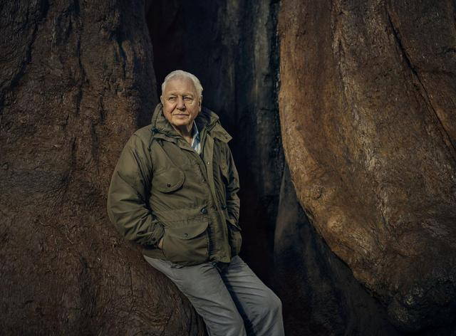 Sir David Attenborough and Yorkshire TV company Candour picked for huge 5G project