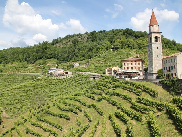 Try a vegan Prosecco from Italy.