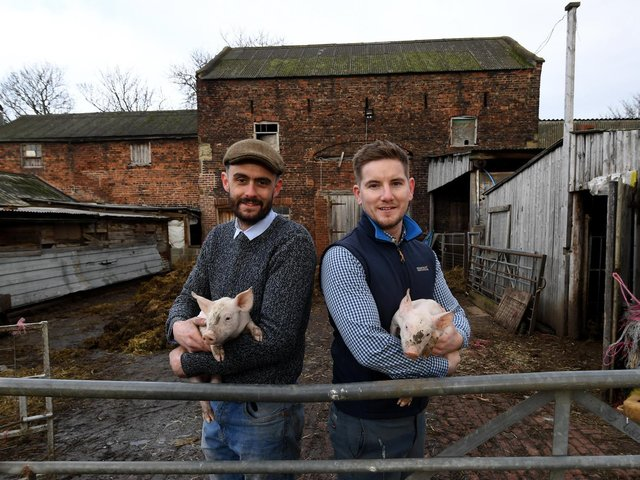 Josh Wright and Luke Andrew farm pigs and arable crops on the Methley Estate