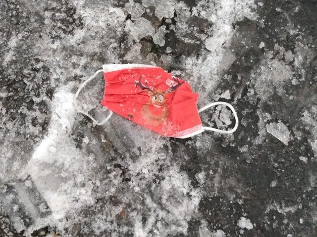 A discarded festive face mask photographed by Lorraine Behrens