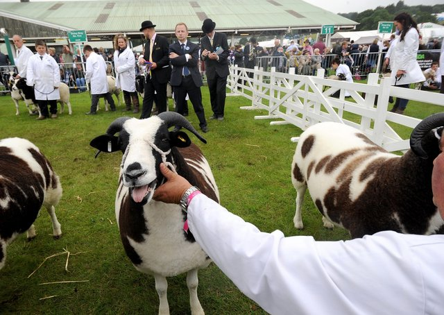 It is hoped the Great Yorkshire Show will still go ahead this summer.