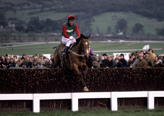 Little Owl and the amteur rider Jim Wilson clear the last fence in the 1981 Cheltenham Gold Cup for trainer Peter Easterby. Photo: Cheltenham Racecourse.