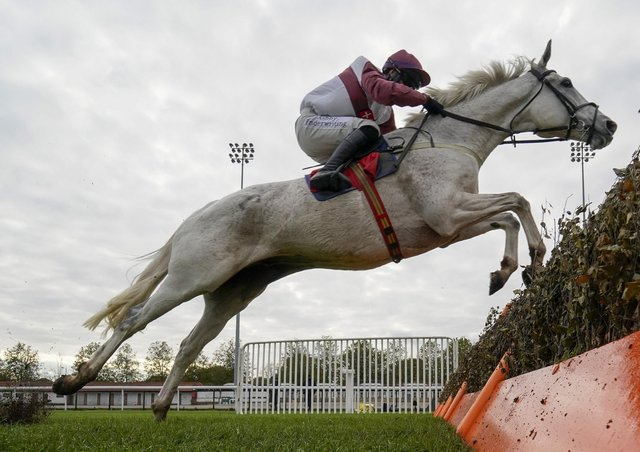 The grey Settle Streak will carry the colours of Settle farmer Les Fell in next week's Champion Hurdle.