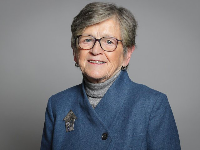 Baroness Armstrong. Photo: UK Parliament