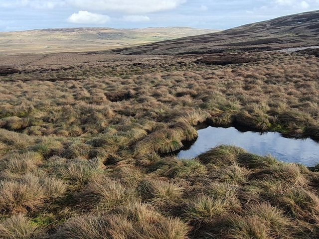 Thousands of acres of peatland have been restored in Yorkshire