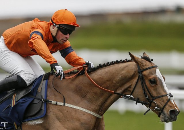 Jedd O'Keeffe's Sam Spinner lines up on day three of the Cheltenham Festival.