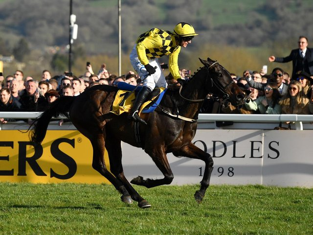 SAME AGAIN? Paul Townend and Al Boum Photo take last year's Magners Cheltenham Gold Cup - and they can do so again one year on. Photo by Dan Mullan/Getty Images.