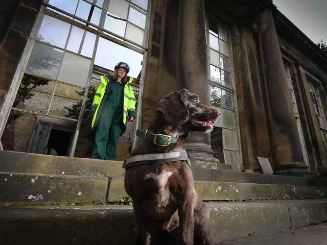 Rothound handler Isabel Mar pictured with her dog Pip at the Camellia House, at Wentworth Woodhouse, Rotherham. Picture by Simon Hulme