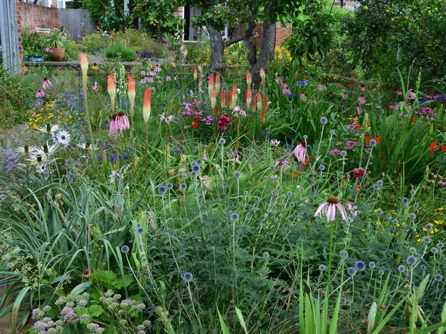 The garden in Fir Street, Sheffield is run by the Department of Landscape Architecture at the University of Sheffield. Picture: PA