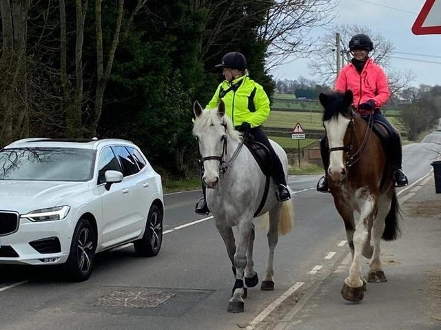 Officers from South Yorkshire Police's mounted section have been out on the road in a bid to educate drivers on how to pass a horse safely.