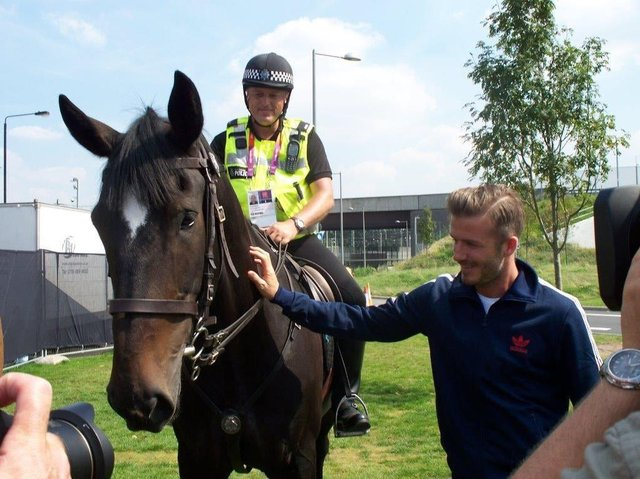 South Yorkshire Police horse Bertie when he met David Beckham at the London 2012 Olympics.