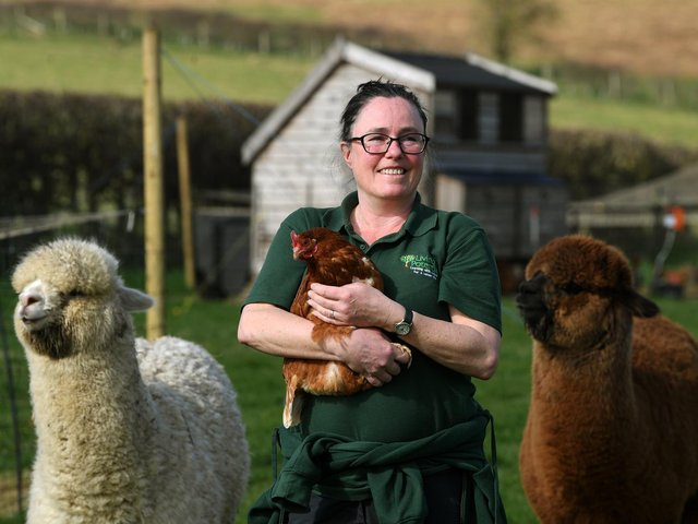 Tanya Bish with some of her livestock
