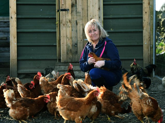 Andrew's partner Kim has had to buy new hens to serve local demand for her eggs during lockdowns
