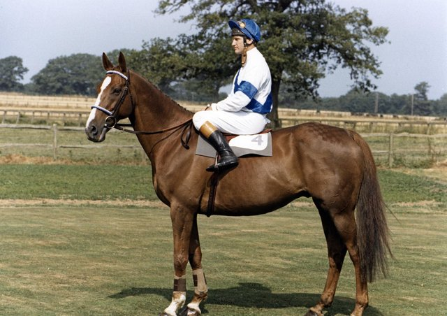 Bob Champion and Aldaniti after their emotional 1981 Grand National win.