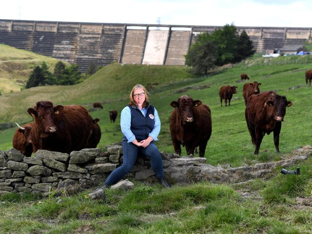 Mrs Hallos said farmers were at the beginning of a 'really busy time' in the countryside with lambs and calves arriving.