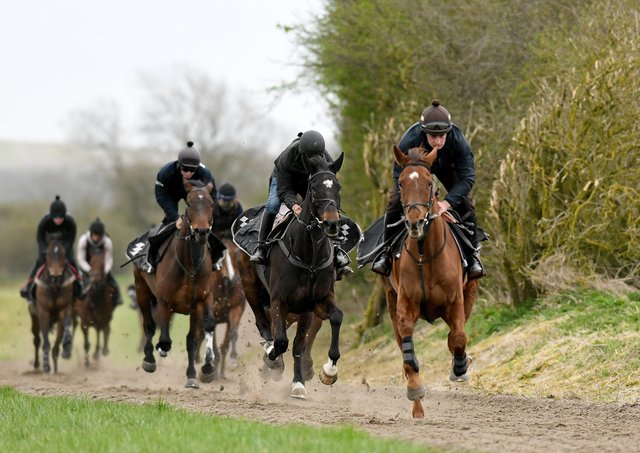 Henry Brooke and Definitly Red lead Brian Ellison's string up the Malton gallops before the Randox Grand National. Photo: Gary Longbottom.