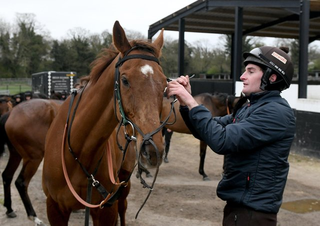 Henry Brooke with Defintly Red at Brian Ellison's stables last week.