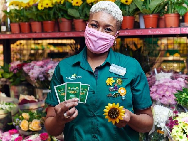 Morrisons is giving away sunflower seeds to customers.