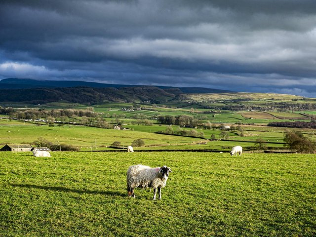 The hills near Clapham Station in the Yorkshire Dales National Park. (Tony Johnson).