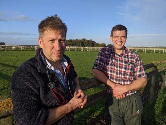 The 12th series of The Yorkshire Vet starts on April 13