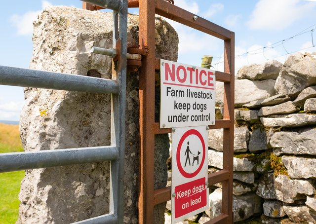 What more can be done to encourage visitors to rural Yorkshire to respect the Countryside Code?