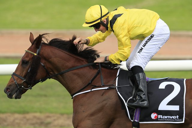 This was the William Haggas-trained  Addeybb winning in Australia last year under Tom Marquand.