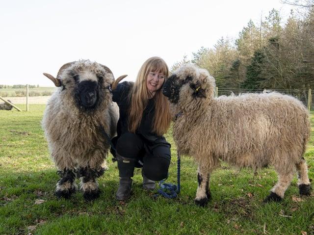 Sharon Lawlor has set up sheep walking experiences