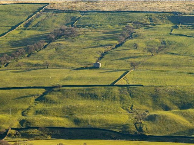Fields in Nidderdale, North Yorkshire, which boasts an Area of Outstanding Natural Beauty. Picture: Tony Johnson.