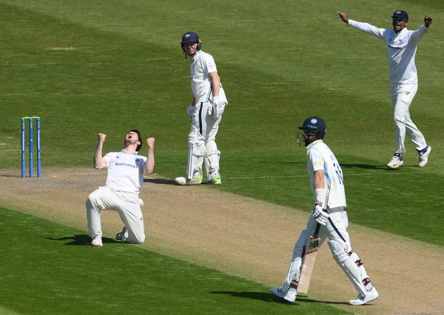 Sussex's George Garton celebrates after trapping Yorkshire's Joe Root lbw.  (Photo by Mike Hewitt/Getty Images)