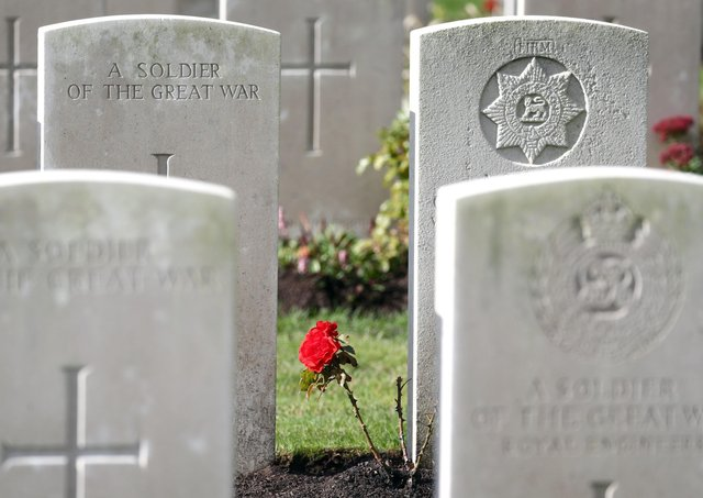A rose growing between the headstones at the Commonwealth War Graves Commission's Wytschaete Military Cemetery, near Ypres, Belgium. Picture: Joe Giddens/PA Wire