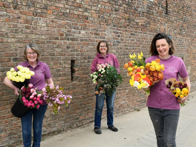 Jill, Jan and Suzie are all from farming backgrounds and were growing flowers commercially in separate businesses before they decided to collaborate
