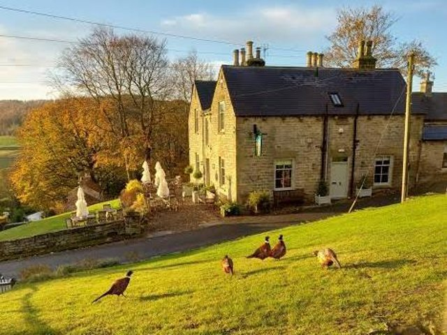 Formerly the Inn at Hawnby, the Owl has been transformed into a country pub and restaurant