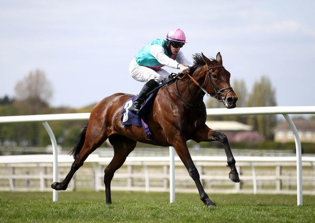 Cosy win: Noon Star ridden by Richard Kingscote wins The racingtv.com Fillies' Novice Stakes at Wetherby Racecourse yesterday. Picture: Tim Goode/PA Wire.