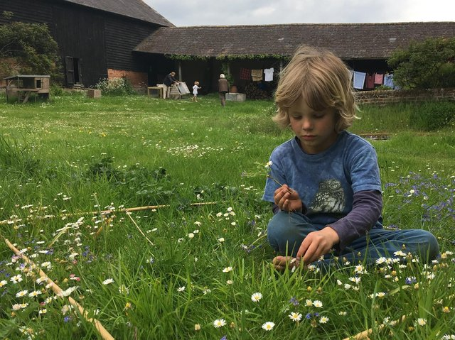 Boy counting flowers as part of Every Flower Counts (c) Archie Thomas