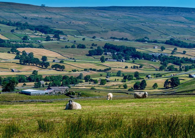 How can Yorkshire's rural areas be better represented in the future?