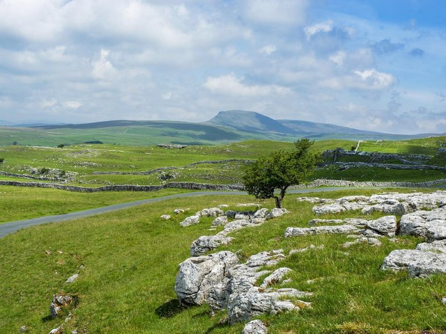 Limestone in the Dales on the hills above the village of Langcliffe close to Settle in the National Park with Pen-y-Ghent in the distance.