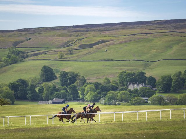 Racehorses on the gallops in Middleham. (Photo credit: Danny Lawson/PA Wire)