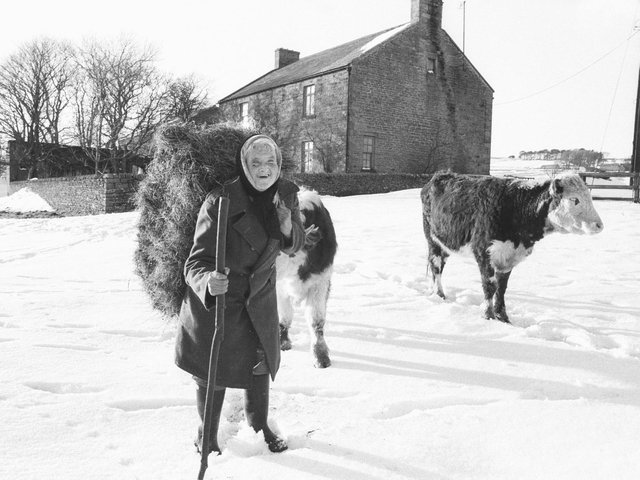 Hannah Hauxwell shot to fame in the Yorkshire TV documentary, 'Too Long a Winter', about her life at Low Birk Hatt Farm in Baldersdale without electricity or running water.