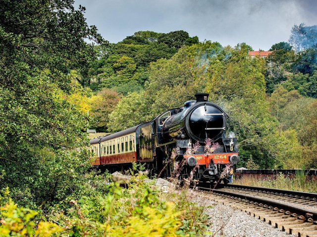 The North York Moors Railway (NYMR) is one of our most popular heritage railway lines. (Picture: Charlotte Graham).