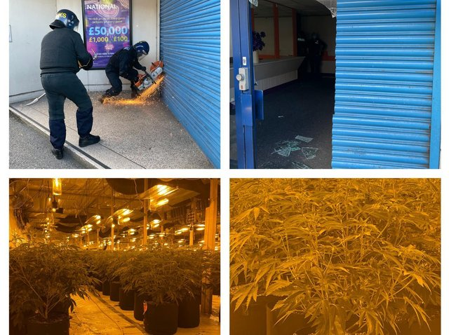 The plants were seized following a police raid at the Empire Bingo in Swinton Road, Mexborough on Tuesday morning.